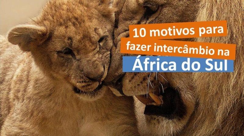 10 motivos porque fazer intercâmbio na África do Sul